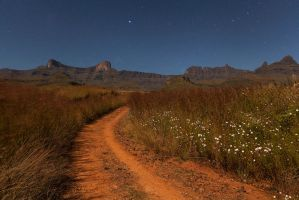Cosmos Under the Stars by carlosthe