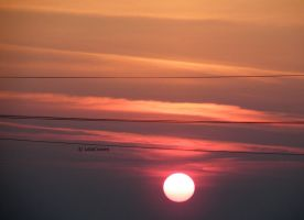 Sunrise and wires II by LolaCraven