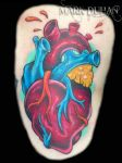ANATOMICAL HEART by amduhan