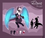 Draco, The Dreamer. by ShikkaTL