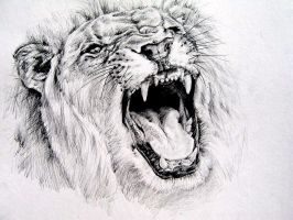 Lion roar by KingVahagn