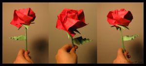 Origami: Kawasaki Rose views 2 by MapleRose