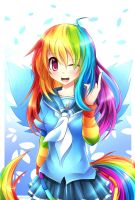 Rainbow Dash Anime by LoveCatFluttersy