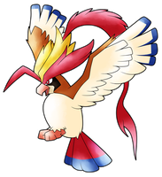 Mega Pidgeot by AR-ameth