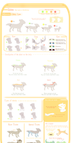 Iktie Species Guide by LiticaHarmony
