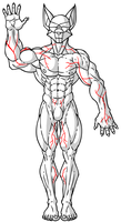 Quick Veins Reference by ACommonMisconception