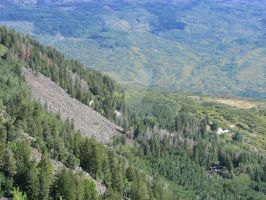 Grand Mesa National Forest V by Qphacs