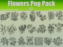Flowers Png Pack #2 by BusraGural
