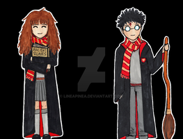 Hermione and Harry by lineapinea