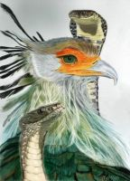 Secretary Bird With Snakes by Mozisart