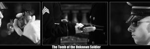 Tomb of the Unknown Soldier by clarinetJWD