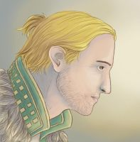 DA2: Anders by Fulcrumisthebomb