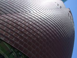 Turtle Shell by Labrug