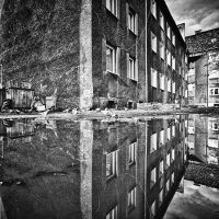 A reflection by RafalBigda