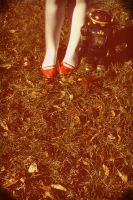 red shoes series 05 by DntFearThReapr