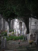 Cemetery by nerapantera