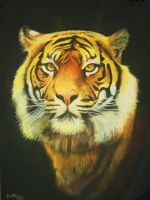 The Mighty Tiger by damago