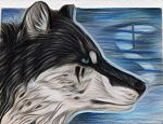 Shalimar ACEO by wolfenwinter