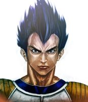 VEGETA by luckfield