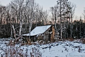 Cold Virginia Winter by Dana-Weise