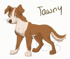 Tawny dog by melted-gummy-bears