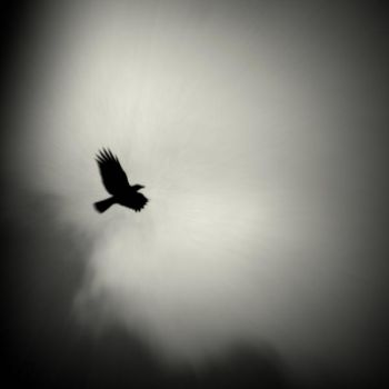 Echoes above by lostknightkg