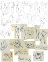 Life drawing Oct 27th 2010 by tigr3ss