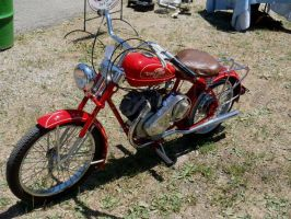 20 inch Whizzer Motorbike left side by Caveman1a