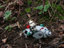 Recon on Endor by m-steel