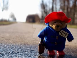 Paddingtons Journey V by GraceGibson
