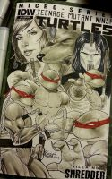 MegaCon TMNT commission with copic markers by Sajad126