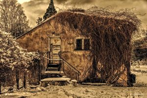 The old house by wiwaldi24