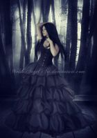 *solitude* by BellaDreamArt