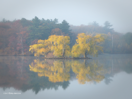 Autumn island light fog by Mogrianne