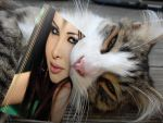 my cat- ma chatte by kilaa0007