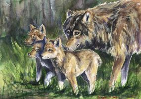 Wolf mother with cubs by GeorgeArt23