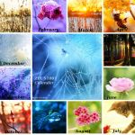 Magic Of Nature Calender. by ZEUS1001
