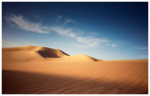 Desert Bliss by MahmoudYakut