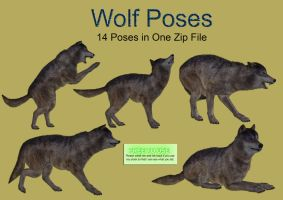 Wolf Poses PNG Stock Pack by Roys-Art