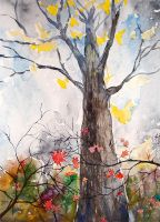 autumnal tree by ayjaja