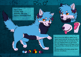 Rin reference sheet by Hyorina