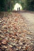 Path of Autumn by erman-y
