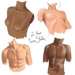 Torso Study by PlaysInTraffic