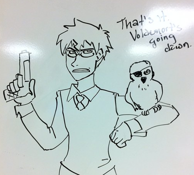 Harry Potter on Whiteboard by ImperialSugar