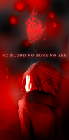 no blood no bone no ash by axeraaa