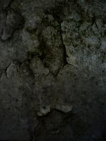 Texture 8 by IdunaHayaPhotography