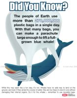 Whales and Reusable Bags by meihua