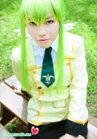 Go green with CC by yuanie
