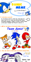 Updated Sonic Meme by Nintendrawer