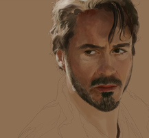 stark wip by tuxedos